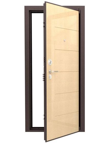 Дверь входная ДС 8У - фото 5332
