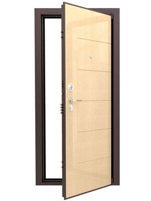 Дверь входная ДС 8У